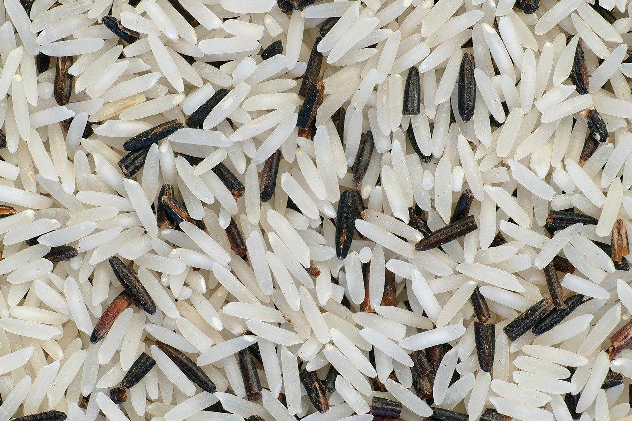 riz basmati fait il grossir